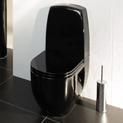 Click to view all Black Toilets