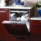 Click to view all Panel Ready Dishwashers