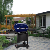 Click to view all Blue Grills