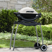 Click to view all Silver Grills