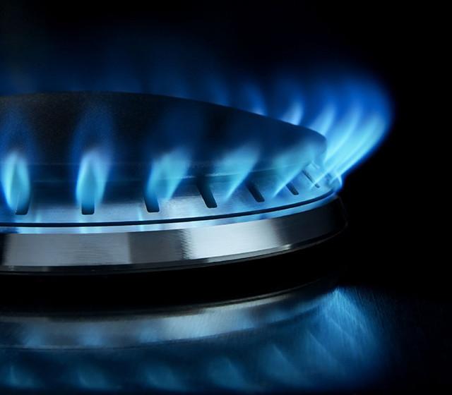 large capacity ovens open vs sealed burners